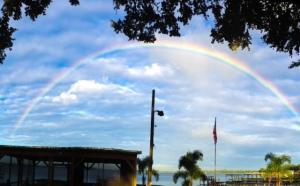 juli's rainbow